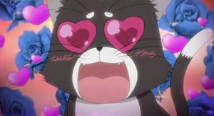 Michi love-eyed
