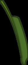 Crane Flower (Leaf)
