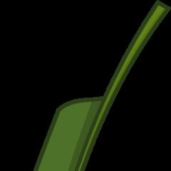 Crane Flower (Leaf 2)
