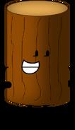 Log Character