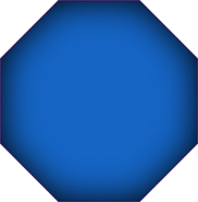 Octagon new