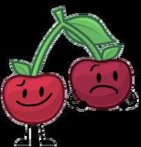 OO Cherries2018 design