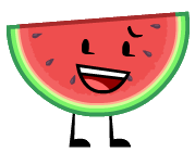 OO Melony 2018 design
