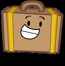 Suitcase Idle2016