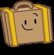 Suitcase2018