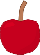 Cherry Bodie3