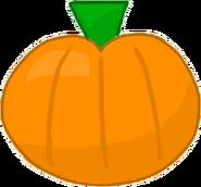 Pumpkin Bodie