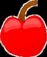 Cherry Bodie4