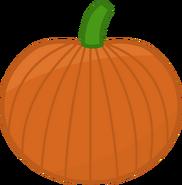 Pumpkin 3-4