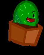 Cactus Idle