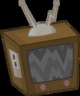 Television Body