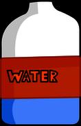 Water body