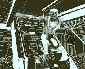 Walker stairs