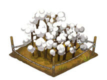 File:Cotton Thumbnail.png