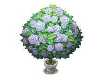 File:White rose bush.png