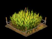 File:Thumb farm barley01.png