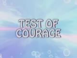 Teste de Coragem