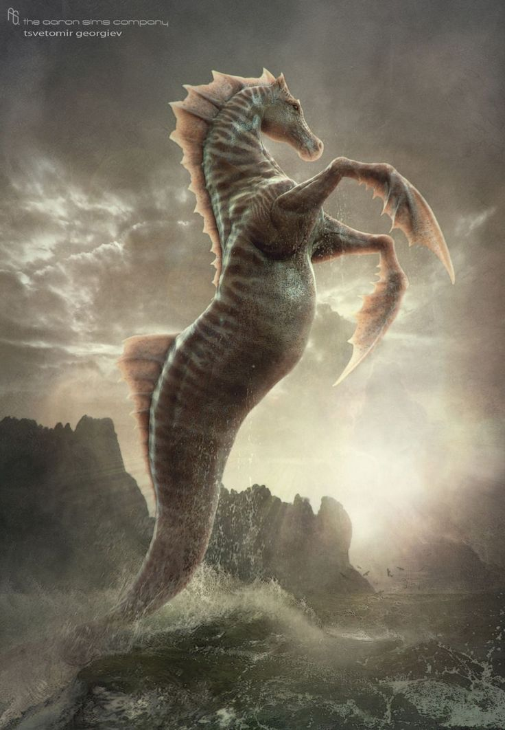 Hippocampus mythology  Wikipedia