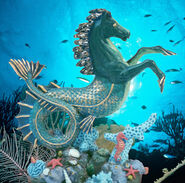 Hippocampus Seahorse by OZ-best