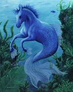 Hippocampus - blue violet