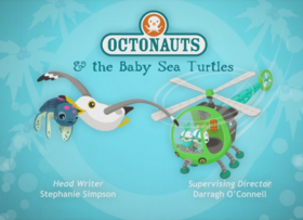 The Baby Sea Turtles