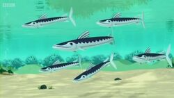 Barracudas Season 3 Episode 9 New Episode 2014.mp4 000375480