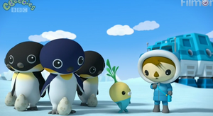 The Emperor Penguins