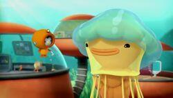 Lions Mane Jellyfish Season 3 Episode 14 New Episode 2014.mp4.crdownload 000049240