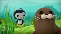 Harbour Seal Season 3 Episode 13 New Episode 2014.mp4 000361840