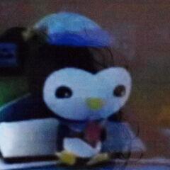 Peso wearing his night cap