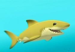 Lemmy the Lemon Shark