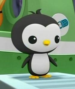 Pinto Penguin
