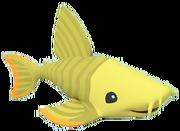 Panaquecatfish