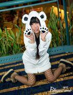 Aoikatori panda