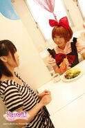 Apricotmaidcafe
