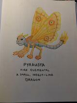 Pyrausta
