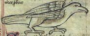 Ercinee Bestiarius