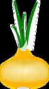 Onion Body
