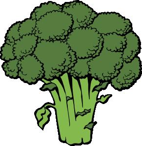 File:Broccoli Body.png