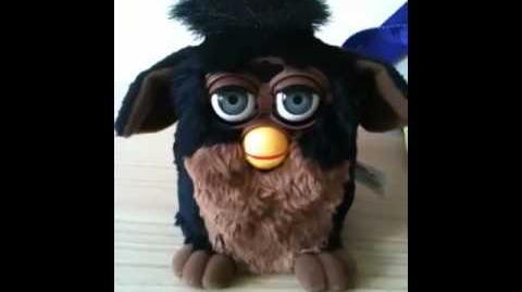 Brown & Black Furby