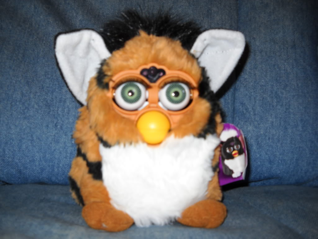 Image result for 1998 furby