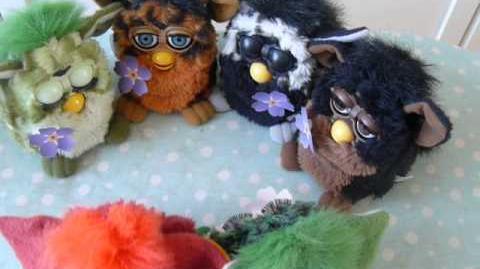 Furby Bo, Dah, (.), (.),Toh-loo, and Dah-loh-lah