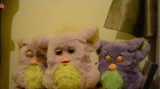 Funky Furby Sings All 3 Songs