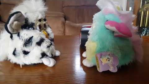 Dalmatian Furby & Spring Furby Conversation