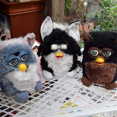 A black and white Foobie between two Furbys