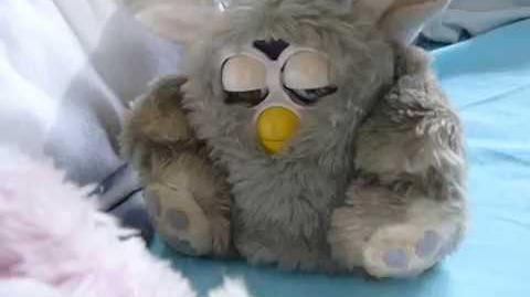 Special Furby fake Coobie part 2 Special Furby fake Coobie (16-06-16)