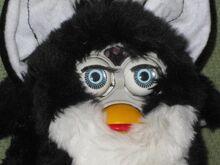 Amazing-foobie-black-white-blue-eyes 1 ab656a45212fce8d8a6429b932703503