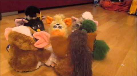 Die Furby Gruppe unterhält sich