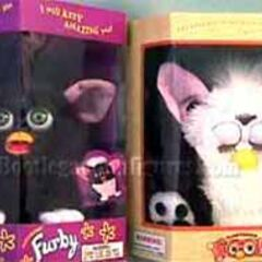 Furby and Foobie in their boxes