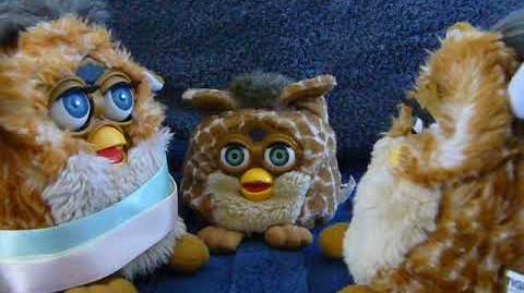 Furby Koh-koh and Dah-loo-lah